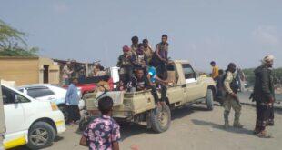 حملة لقوات طارق في المخا